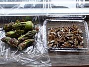 花巻で買った食材:タラの芽
