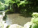 伊豆七滝 大滝温泉天城荘 湧き水の池