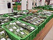 一ノ関のスーパーに山積みの山菜