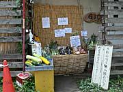 野菜の無人販売