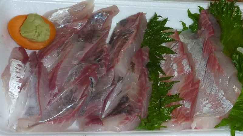 温泉津の町の魚屋の刺身